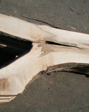 Tischplattenrohling Ahorn Bohle #7