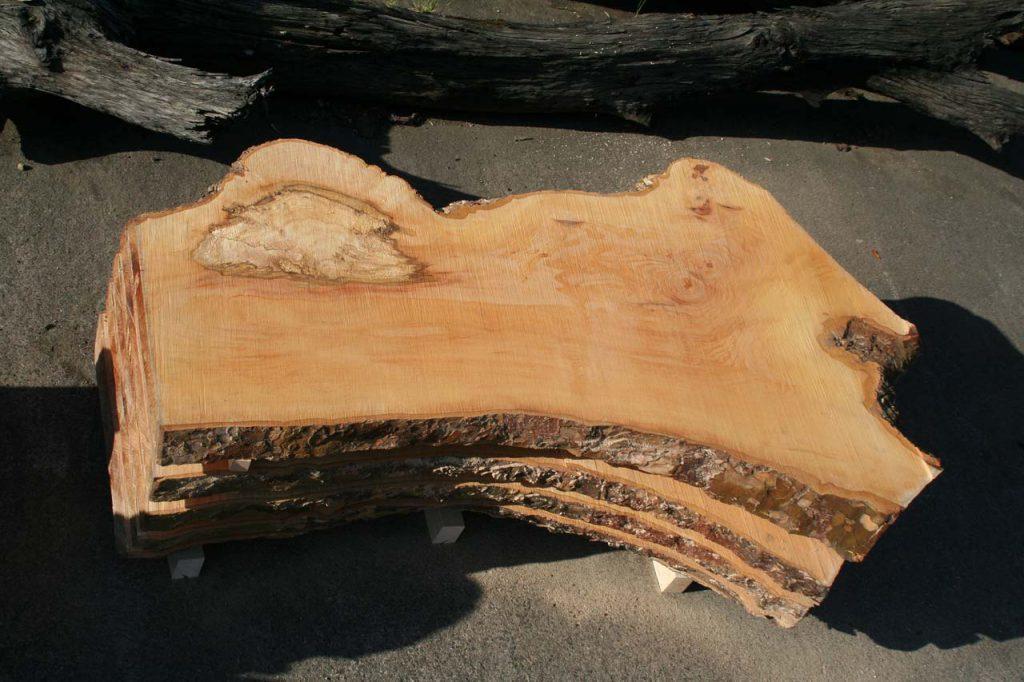 Platane Massivholzplatten