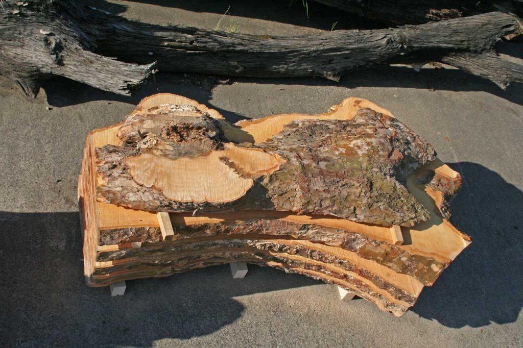 Platane Massivholztischplatten