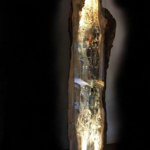 Baumstamm Regal Baumstamm Bar in einer Pappelhälfte eingebaut