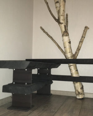 Flurgarderobe schwarz geköhlt mit einem Birkenast